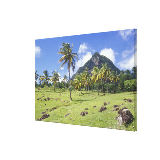 Gros Piton view along the historic trail in Canvas Print