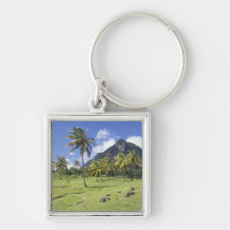 Gros Piton view along the historic trail in Key Chain