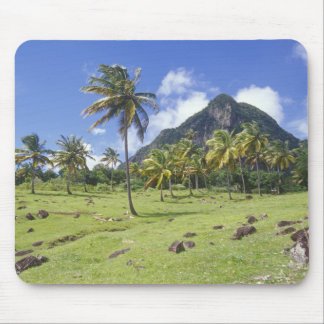 Gros Piton view along the historic trail in Mouse Pad