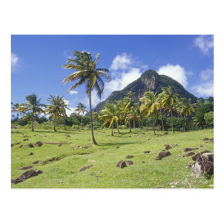 Gros Piton view along the historic trail in Postcard
