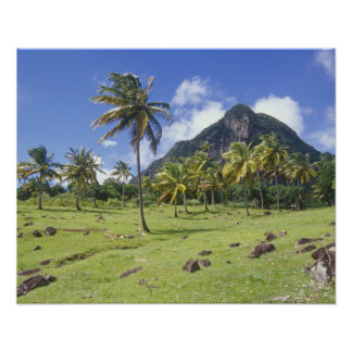 Gros Piton view along the historic trail in Poster