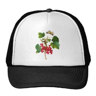 Groseillier Rouge by Pierre Joseph Redoute Trucker Hat