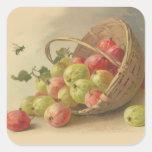 Grosellas espinosas del vintage calcomanias cuadradas