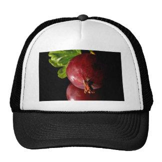 Grosellas espinosas gorra