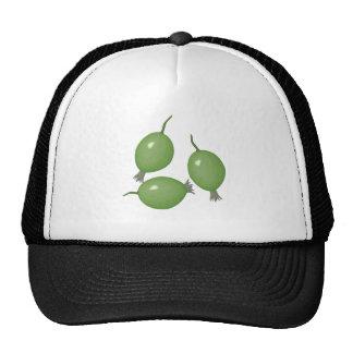 grosellas espinosas gorras