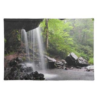 Grotto Falls Smoky Mountain Nat'l Park Placemat