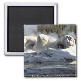 Grotto Geyser, Upper Geyser Basin, Yellowstone Nat Magnets