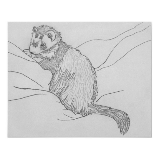 """""""Grouch"""" Ferret Drawing Poster"""
