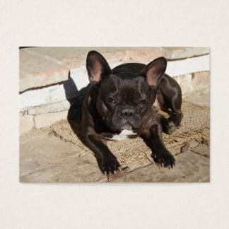 Grouchy French Bulldog Business Card