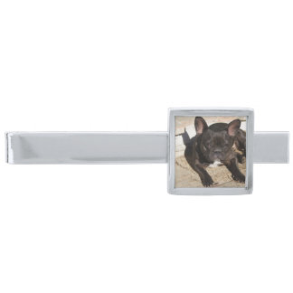 Grouchy French Bulldog Silver Finish Tie Clip