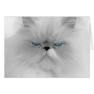 Grouchy Persian Cat Card