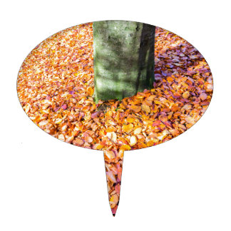 Ground around tree trunk covered with autumn leave cake topper