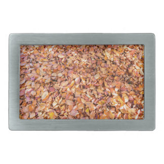 Ground covered with beech tree leaves in autumn rectangular belt buckle