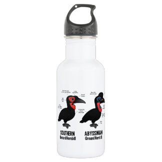 Ground Hornbil Statistics Stainless Steel Water Bottle