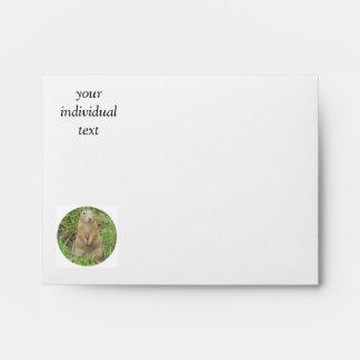 ground squirrel 01 envelopes