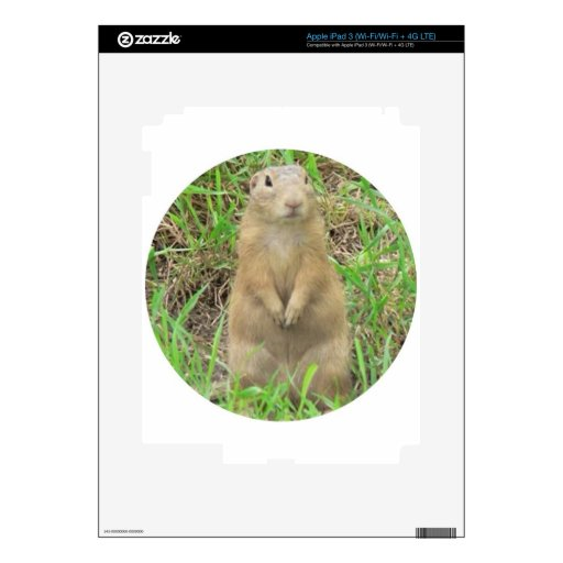 ground squirrel 01 decal for iPad 3