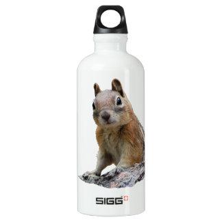 Ground Squirrel Aluminum Water Bottle