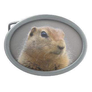 Ground Squirrel Belt Buckle