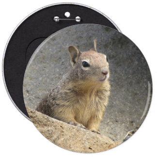 Ground Squirrel Button