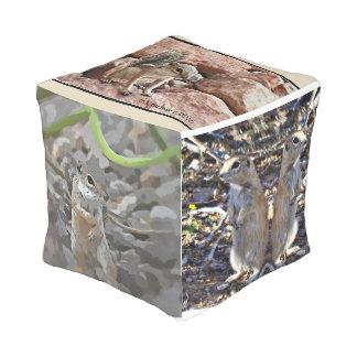 Ground Squirrel Cube Pouf