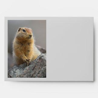 Ground Squirrel Envelope