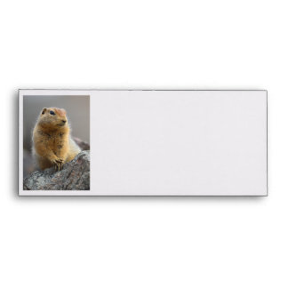 Ground Squirrel Envelopes