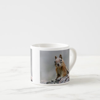 Ground Squirrel Espresso Cup