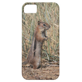Ground Squirrel iPhone SE/5/5s Case
