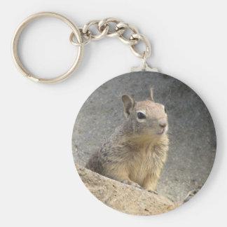 Ground Squirrel Keychain