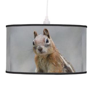 Ground Squirrel Pendant Lamps