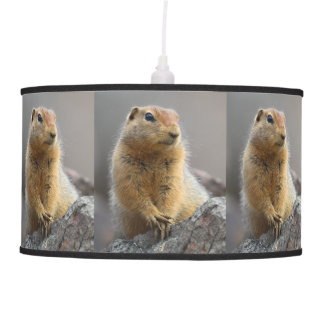Ground Squirrel Lamps