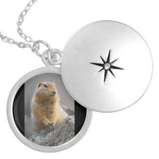 Ground Squirrel Locket Necklace