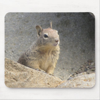 Ground Squirrel Mousepads