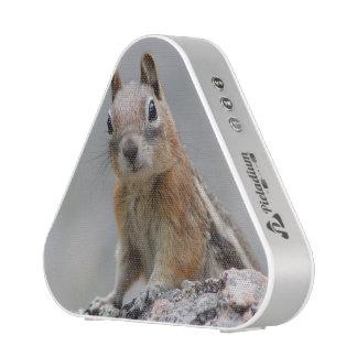 Ground Squirrel Speaker
