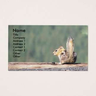 Ground Squirrel Photo Business Card