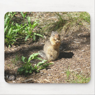 Ground squirrel photo Mousepad