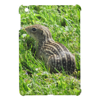Ground Squirrel Photograph iPad Mini Covers