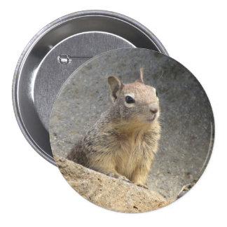 Ground Squirrel Pinback Buttons