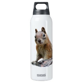 Ground Squirrel SIGG Thermo 0.5L Insulated Bottle