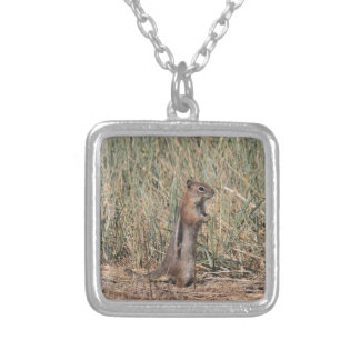 Ground Squirrel Silver Plated Necklace