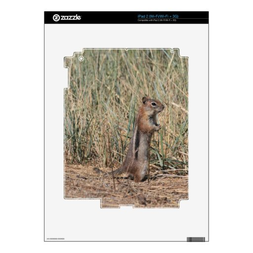 Ground Squirrel Skins For The iPad 2