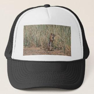 Ground Squirrel Trucker Hat