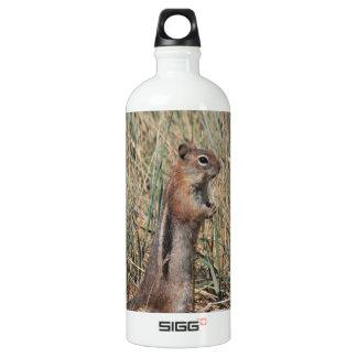 Ground Squirrel Water Bottle