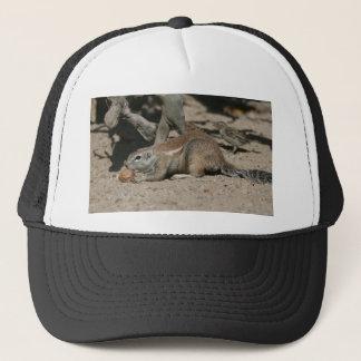 Ground squirrel with walnut trucker hat