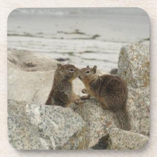 Ground Squirrels in Love Beverage Coaster