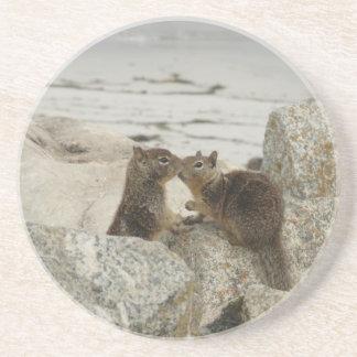 Ground Squirrels in Love Coaster