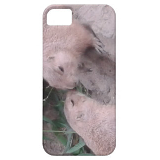 Ground squirrels iPhone SE/5/5s case