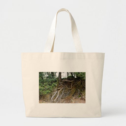 Grounded Canvas Bag