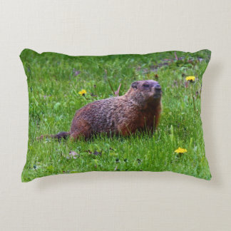 Groundhog Accent Pillow