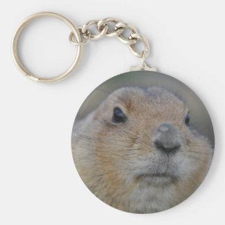 groundhog basic round button keychain